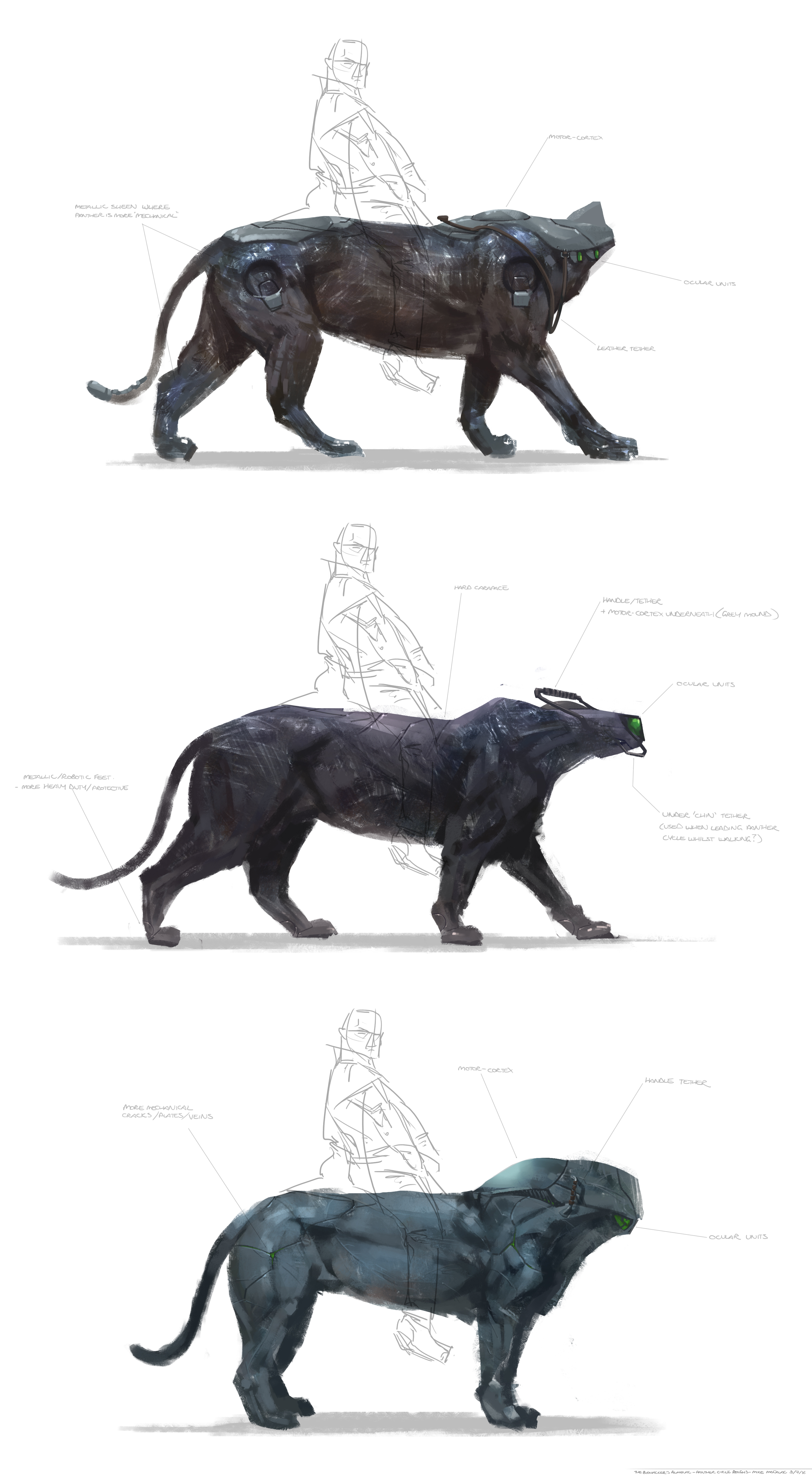 Sketches of the PantherCycle