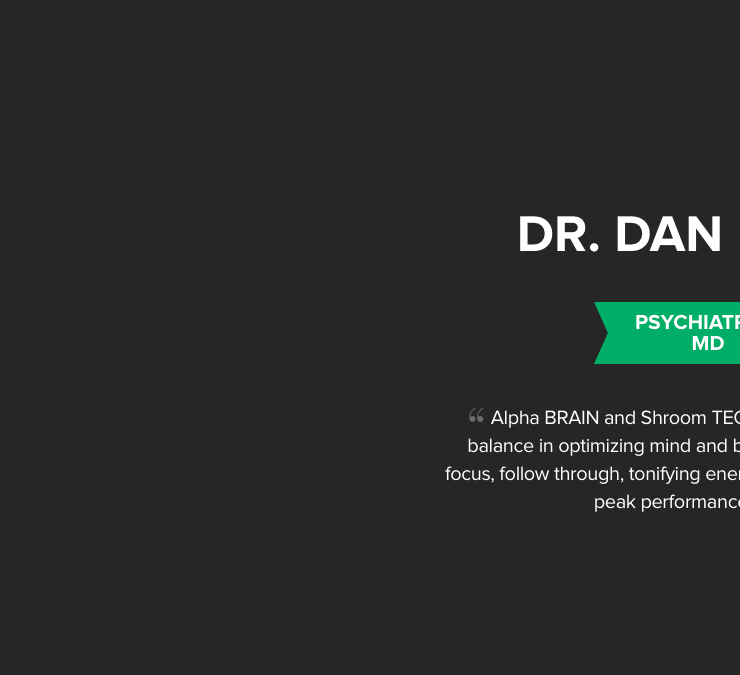 The Concussion Repair Manual by Dan Engle - Publishizer