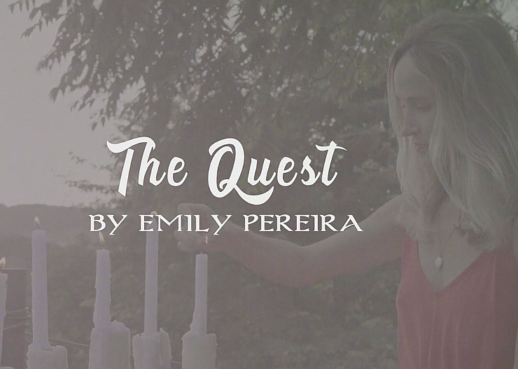 The Quest by Emily Pereira - Publishizer
